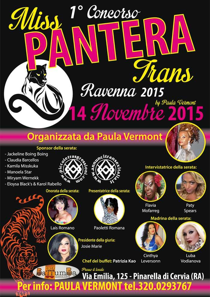 pantera-concorso2015