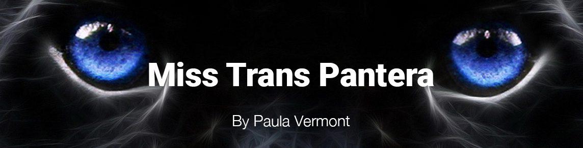 Miss Trans Pantera